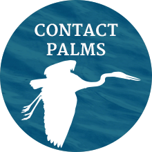 Contact PALMS